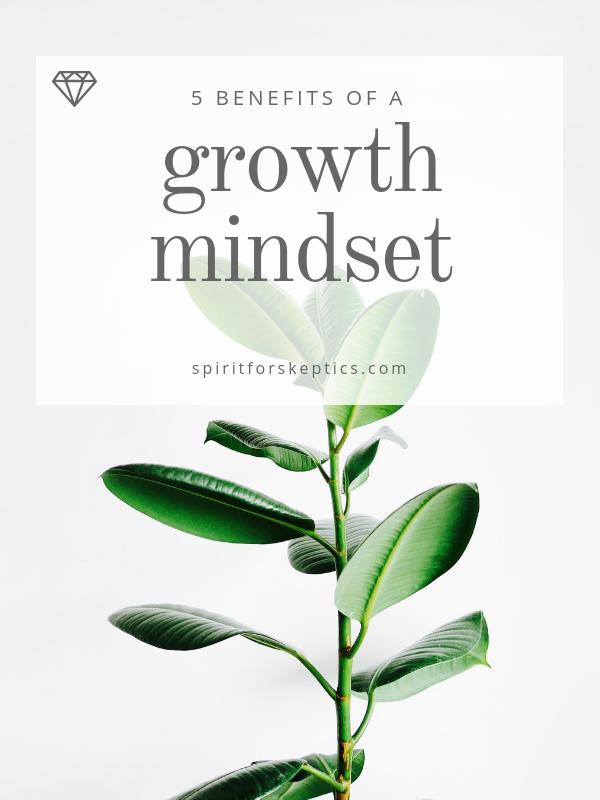 mindset - portrait (1).png
